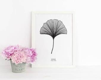 Ginkgo Leaf Poster / Leaf Illustration / Scandinavian Art / Modern Poster
