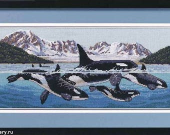 SALE Instead of 177 dollars 169 order to order !! Killer Whales