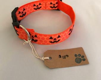 Halloween Dog Collar, Dog Collar, Polka Dot Dog Collar, Jack-o-lantern Dog Collar