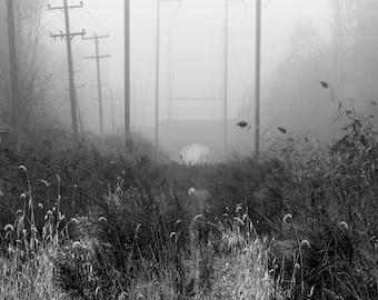 Cresheim Valley Bridge . Black and White Nature Photography Fine Art Print. Fog, Bridge, Wall Decor.