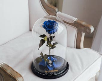 Beauty and the beast rose (Deep Blue) — Perfect gift for her, Rose in glass dome, Enchanted Rose, Forever rose, Preserved rose