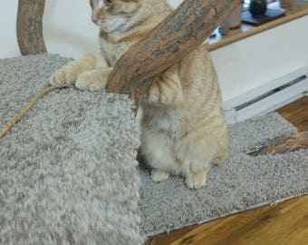 Wooden Branch Cat Tree Stand