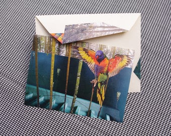 Collage Letter Card: Parrot Dreaming of Australia