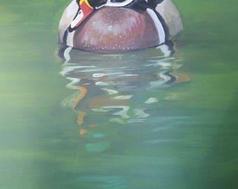 16x20 Acrylic Mallard Duck