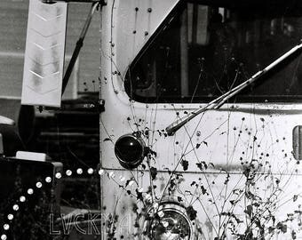 Still Life Photography, Vintage Bus