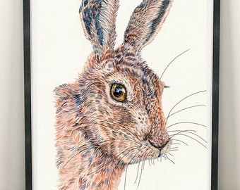 Print of original Hare pen and ink portrait A4 size