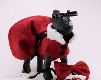 Christmas dog coat dress with dog leash