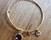 alex and ani gold february bracelet