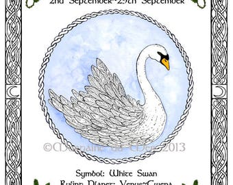 Celtic Zodiac Lunar Astrology Signs Print Druid Tree Lore Sept to Dec Birthdays Swan Butterfly Hound Black Horse Pagan Altar Art pen and ink