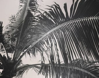 Palm Leaf Print Tropical Leaves Poster Print Palm Print Beach House Decoration Vintage Style Hawaii Island Photography Sepia Print