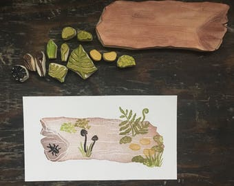 Forest Log Rubber Stamp Hand Carved Rotting Log Life Cycle Educational Art