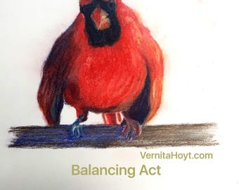 SPECIAL Fathers Day // Cardinal red bird // pastel drawing // Texas painting of bird on branch // collectible artist
