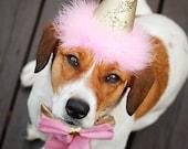 Pink and Gold Dog Birthday Hat, Dog Birthday Hat, Baby Pink, Princess Birthday Hat