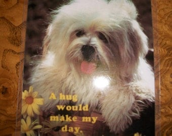 Laminated Post Cards for use as Coasters, 4 designs, Dogs & Kitten, by Nanas Vintage Shop on Etsy