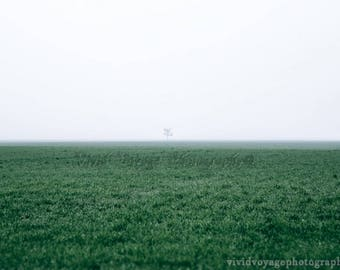 Landscape Photography, Minimalist Art, Fog Photograph, Farm Field, Tree Photo, Foggy Landscape, Farmhouse Decor, Nature Photography