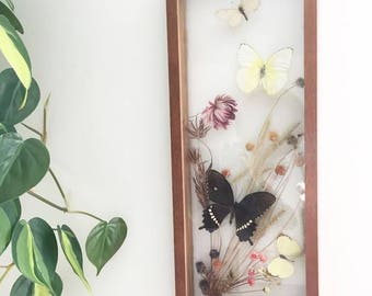 Vintage 1970s Taxidermy Butterfly Shadow box with preserved flowers