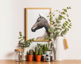 Art Printable - Horse Photography - Modern Art - Animal Art Print - Digital Download - Fine Art Photography - Gallery Wall - SKU:5227