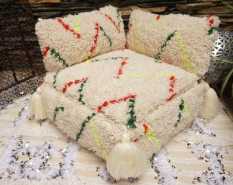 Set Of Beni Ourain Tassel Floor Pillow Pouf & 2 Pillow Covers Highest Quality Berber Moroccan Handmade Colorful Ottoman Pouf 03YS057
