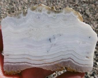 Sowbelly Agate Slab  (80X50X7)