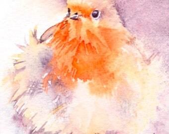 Original Bird Painting, Robin Watercolour Painting, Fluffy Bird, British Wildlife, Winter bird Art, Christmas gift, Gift for birdwatcher