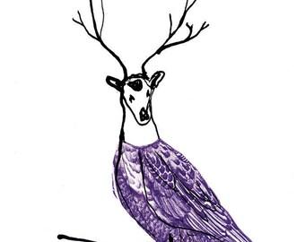 Deer Bird, fine art print, framed