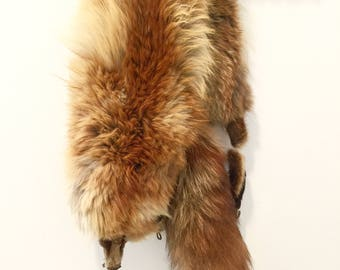 Vintage Red Fox Fur Stole 32 Inch Pelt and 12 Inch Tail