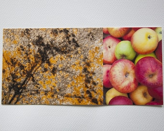 "yellow long ""nature"" apples and wall map printed on cotton paper fine art"