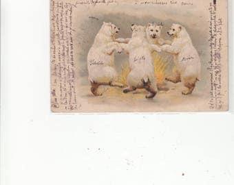 Uncommon Univided Back Antique Postcard Polar Bears Dancing Around Fire Fantasy