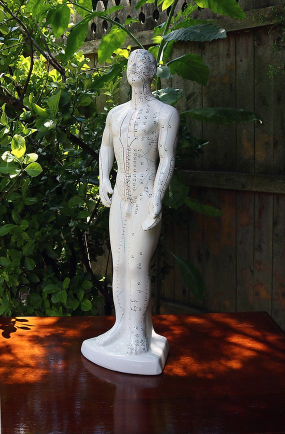 Acupuncture Man-20 1/2 inches tall-Porcelain Statue- Pseudoscience-acupressure statue-Chinese Therapy-Acupuncture Statue-Bust