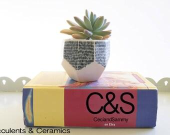 Flower Pot Painted,Modern Planters,Succulent planter,Plant stand gift,Geometric Quirky pot,Ceramic pot,Home Decor ideas,Indoor planter
