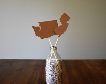 State Shaped Cake Topper