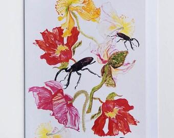 Poppies & Stag Beetles Greetings Card