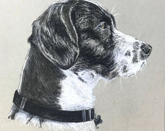 Custom Charcoal Pet Portraits
