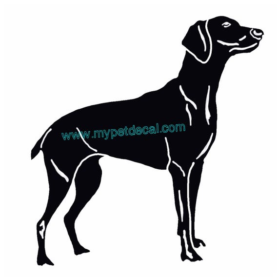 PET ANIMAL Decals Designs By Stacey Lynn - Sporting dog decals