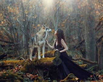 Fine art print dibond - Springwood Lovers