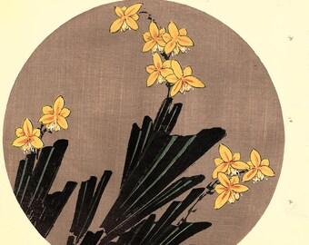 """Japanese antique woodblock print, Ito Jakuchu, """"Leopard flower, from Jakuchu gafu"""""""