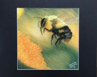 Fuzzy Busy Pastel Honey Bee
