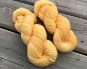Apricot - Squishy Sock - Superwash Merino & Nylon