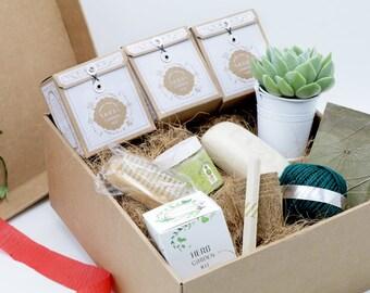 Gardeners Gift Box, Christmas gift for gardeners, Gardening gift box, Gardeners gift hamper, Gardeners gift, Succulent gift hamper