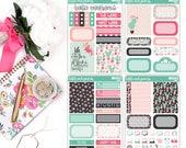 MINI KIT - Cactus Mini Kit, Fits Erin Condren Vertical, Mini Kit Stickers, Travelers Notebook Kit, Sticker Kit - [MK0003]
