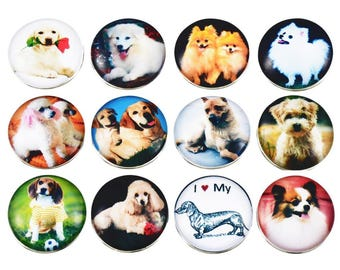 12 dogs snap buttons