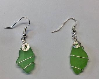 Beach Glass Earrings - Green Earrings - Beach Glass jewelry - Hypo allergenic Earrings  -  every day jewelry -  birthday gift for her