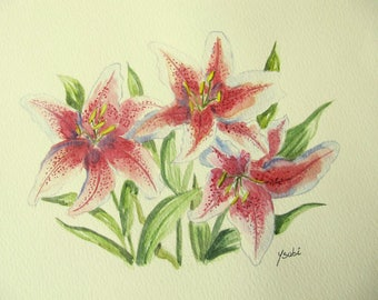 Watercolor 'pink lily'