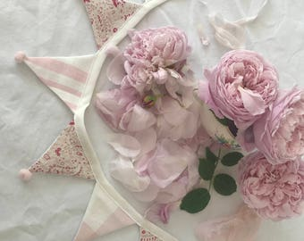 Pretty pink Bunting 1