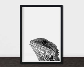 manly office decor black and white printable art lizard photo brother gift chinese water dragon monochrome