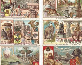 Liebig Collectable Cards: Les Animaux dans l'art.
