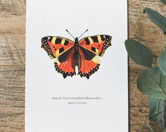 Small Tortoiseshell Butterfly A5 Print