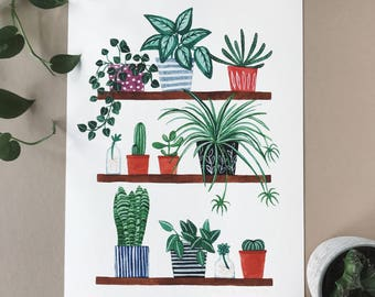 Houseplants A4 Print