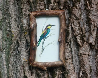 Bird art print Wood frame Bird picture Bee eater picture Antique vintage illustration Wooden rustic decoration Nature art Raw wood