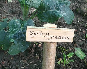 Wooden Plant Markers - Labels rustic veg patch